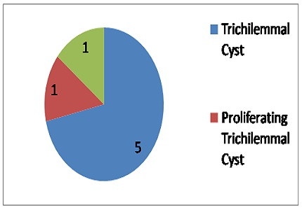 A histomorphological study of trichilemmal cysts: a rural hospital experience