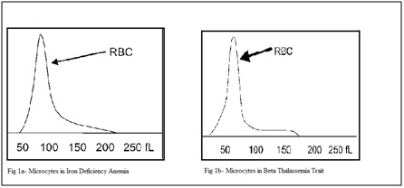 Comparative study of red blood cell morphology in peripheral smear and automated cell counter