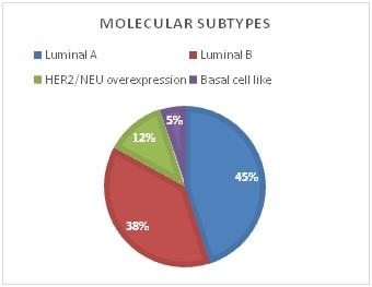ER, PR, M1B1 index and HER2/NEU status in 100 cases of Breast Carcinoma